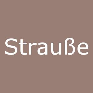 Strauße_icon