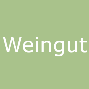 Weingut_icon